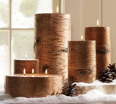 Rustic Outdoor themed decorations needed! : wedding Birch Pillar Candles From Pottery Barn Rustic Candles, Pillar Candles, Wax Candles, Winter Wedding Inspiration, Wedding Ideas, Wedding Planning, Branch Decor, Woodland Christmas, Rustic Christmas