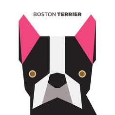 Boston Terrier from 50 Animals Illustrations Drawn with Simple Shapes (pin dedicated to our CEO Cathy who loves and owns adorable boston terriers! Abstract Geometric Art, Geometric Shapes, Graphic Design Illustration, Illustration Art, Animal Illustrations, Boston Terrier Art, Boston Art, Elements Of Art, Simple Shapes