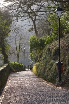Path Down to Clovelly, Devon, you need rubber soled shoes to walk down to the sea