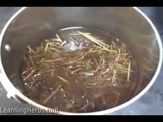 Homemade Herbal Cough Syrup with Wild Choke Cherry Bark