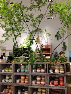 Flower shop styling | Fabulous Flowers, Oxford