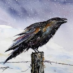 Sentinel, raven watercolor by  Dean Crouser.