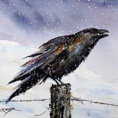 Sentinel, raven watercolor by Dean Crouser.