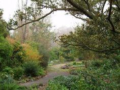 Abbostford Convent Garden