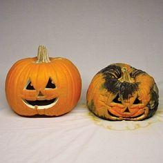 Dr. Frybrain's Pumpkin Embalmer