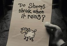 """Do sheeps shrink when it rains?"" (Mary and Max)"