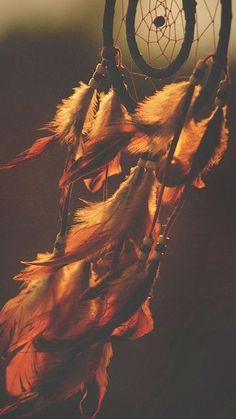 In meinen Träumen bin ich frei und meine Gedanken fliegen wie die Vögel in den Himmel. Ich kann atmen, denn ich fliege mit ihnen… In my dreams I am free and my thoughts fly like the birds in the sky. I can breathe, because I fly with them … Street Photography, Art Photography, Dream Catcher Photography, Landscape Photography, Foto Blog, Bad Life, Dreamcatchers, Urban Art, Wallpaper Backgrounds