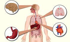 #b1 #witaminy #zdrowie #niedobory #uroda #depresja #poland #vitamins