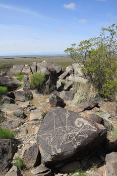 Petroglyph National Monument, Albuquerque, NM. These images are the cultural heritage of a people who have long since moved into other areas and moved on through history. The monument protects them for visitors to see and appreciate for generations to come.