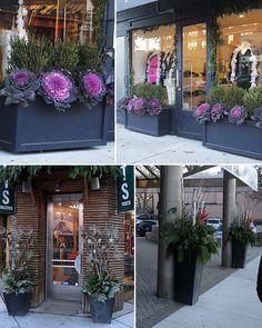 Aubrey + Lindsay's Blog: Winter Planter Inspiration