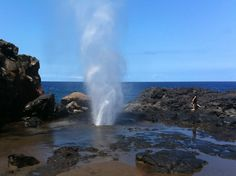 The Nakalele Blowhole is on the northern tip of the western section of Maui, off Kahekili Highway 340. The small dirt parking area is between mile markers 38 and 39.