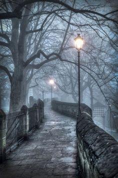 Foggy Walkway ~ Chester, England