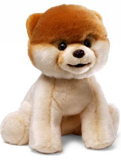 Boo the dog stuffed animal! just saw that this will be sold at Urban Outfitters! i will be purchasing one in the near future