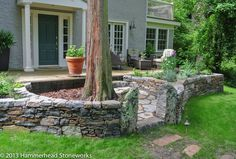 A dry laid free-standing wall creates a protective ring around a tree.