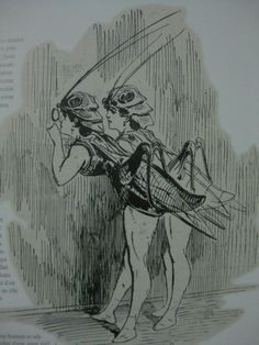 Insect costumes, Betes de Scene