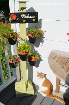 Easy to make wooden plant stand from Cottage at the Crossroads
