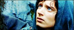 Frodo I will always love you. You are a hero and your eyes speak yourself. Maybe its universal but I understand exactly what you're saying through them. When I think of empathy, you come to mind and I think that a kindred spirit could trace your trail of pain from Mount Doom all the way home. Home is the best place to be, after all.