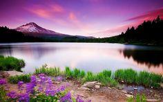 peaceful scenery | Lake of Heaven-Nature Scenery Wallpaper - 1680x1050 wallpaper download