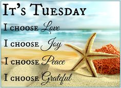 Good Morning Quotes : I choose Love, Joy, Peace, I choose to be Grateful- It's Tuesday - Quotes Sayings Happy Tuesday Morning, Happy Tuesday Quotes, Sunday Quotes, Good Morning Quotes, Happy Quotes, Positive Quotes, Positive Mind, Tuesday Humor, Emo Quotes