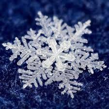 Risultati immagini per fiocchi di neve immagini