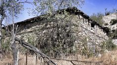 Samsa Çavuş Camisi, erken dönem Osmanlı mimarisinin pek bilinmeyen (mimari açıdan pek de kayda değer görülmeyen) eserlerinden biridir. Bu eser ile ilgili bilgi vermeden önce eserin bânisine kısaca …
