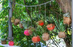 Look, no basket! Make an intriguing display with Japanese kokedamas Unique Gardens, Back Gardens, Beautiful Gardens, Outdoor Gardens, Garden Crafts, Garden Art, Garden Ideas, Back Garden Design, Gardening Supplies