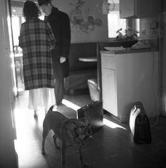Vivian Maier, Untitled (Interior, Couple with Dog) ca. Vivian Maier Street Photographer, Photographs Of People, Street Photographers, Urban Photography, Rabbit Hole, Vivian Mayer, 1960s, Photojournalism, Selfies