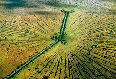 Aerial photos by Alex MacLean