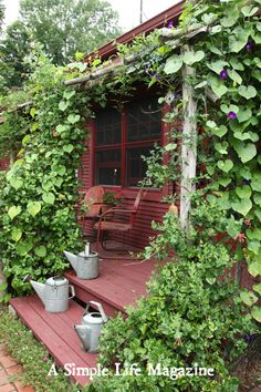 Make your own porch with logs and vines!