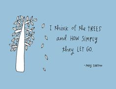 I think of the trees & how they let go