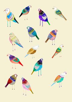 birds IDEAS FOR COLORS