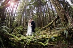 Enchanted Forest Wedding  (could do this at Volcano National Park maybe?)