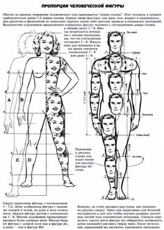 Drawing tips body shape drawing tips for beginners. Sketches, Art Drawings, Drawings, Anatomy Drawing, Body Drawing, Figure Drawing, Human Figure, Art, Anatomy