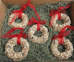 Birdseed Christmas tree decorations, for hanging outside