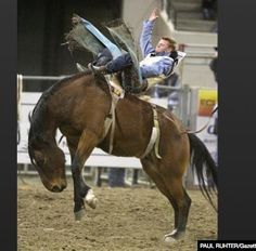 592 Best Rodeo Rough Stock Images In 2017 Rodeo Cowboys