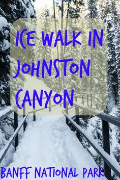 Hiking through the land of ice in Canada. That is how I see hiking in Johnston Canyon. Activity popular in Banff National Park all year round but winter makes it special as you end up admiring several frozen waterfalls.
