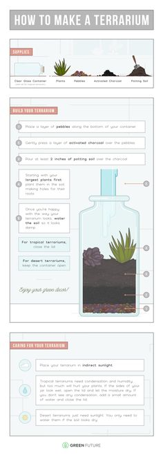No green thumb? No problem. Put some green in your home decor by making a DIY terrarium with succulents or tropical plants. This printable will show you how!