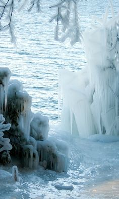 480x800 Wallpaper fetters, icicles, cold, ice, winter, bushes, tree, river