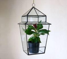 Jardinera terrario de cristal