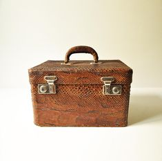 Vintage Snakeskin Travel Case - Vanity case - Train Case - Snake skin Make Up Bag - Overnight - Reptile
