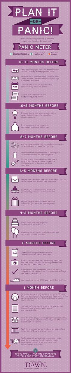 Plan it or Panic?! Panic Meter Infographic for planning a wedding.