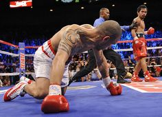 Miguel Cotto takes on Austin Trout December 1st at Madison Square Garden NYC.  Has Cotto learned a few tricks since his last fight?  Time will tell.  Great seats on sale now!   http://www.eseats.com/miguel_angel_cotto_tickets.html