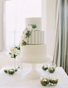 stripes and succulents adorning this cake by http://www.cakeink.com.au/  Photography by Stewart Leishman Photography / stewartleishman.com