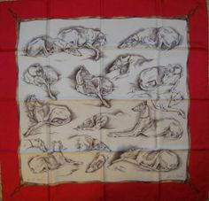 The greyhound art scarf by Hermes and only 388Eur :O