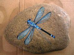 blue dragonfly.jpg 1600 × 1200 bildepunkter