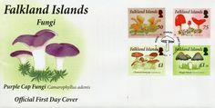 Falkland Islands 2014 FDC Fungi 4v Set Cover Mushrooms Inkcap Chanterelle