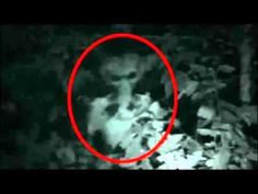 10 Creepiest Alien Photos From the Internet. Aliens Caught on Tape 2016.