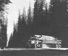pete logging truck