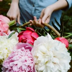 Some very lovely tips for growing your own peonies by Kinfolk