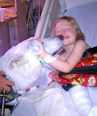 Therapy dogs help patients feel right at home. #nursing